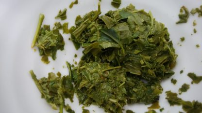 Premium Organic Sencha Nearai